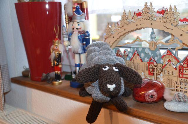 Sheep_Harald_laydown